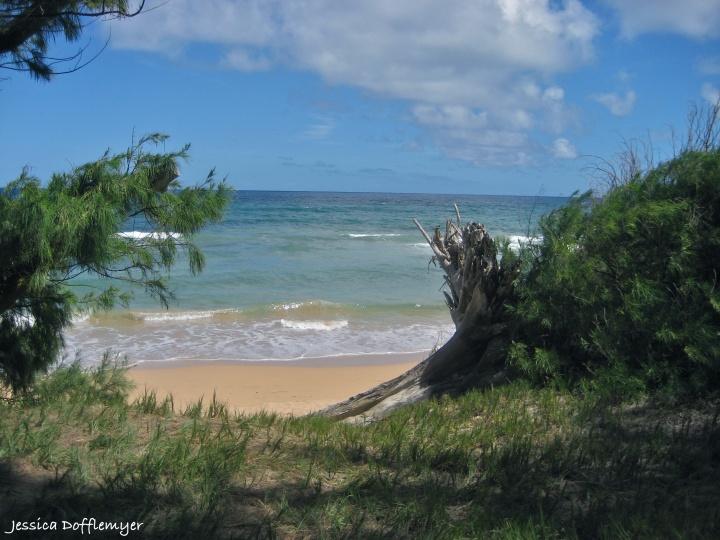 2013-09-16_ocean view