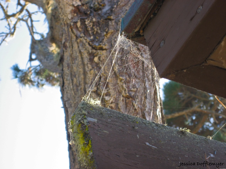 2014-01-03_old web