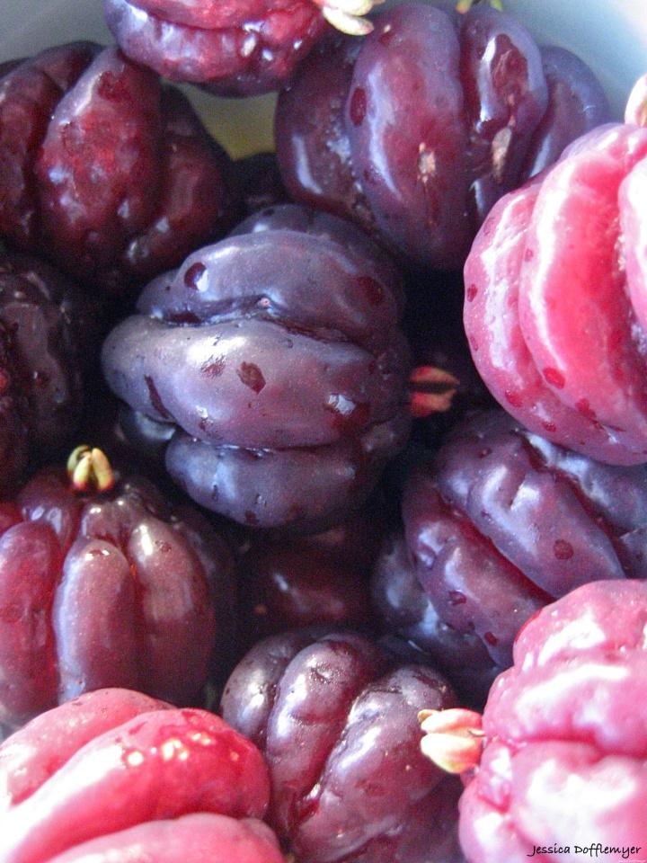 2014-01-21_cherries