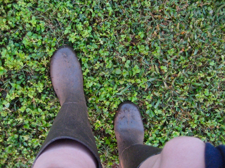 2014-02-20_gum boots