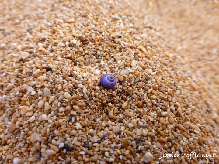 2014-03-24_purple spiral