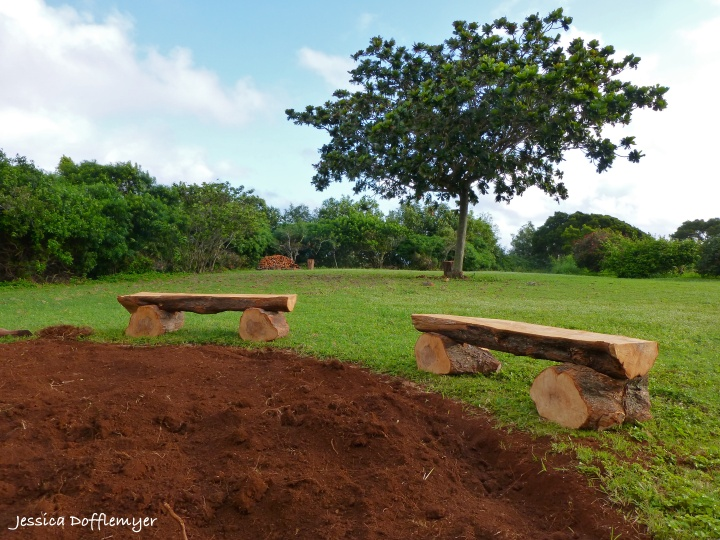 2014-04-02_bench distant