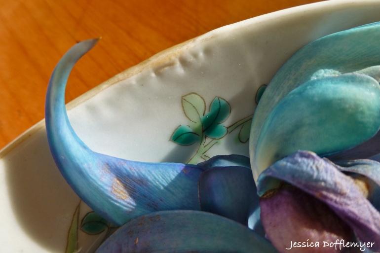 2014-05-15_blue jade close