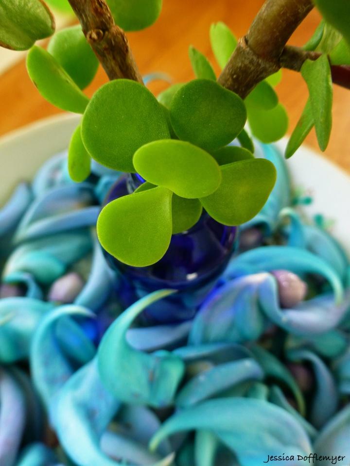 2015-05-14_green w jade