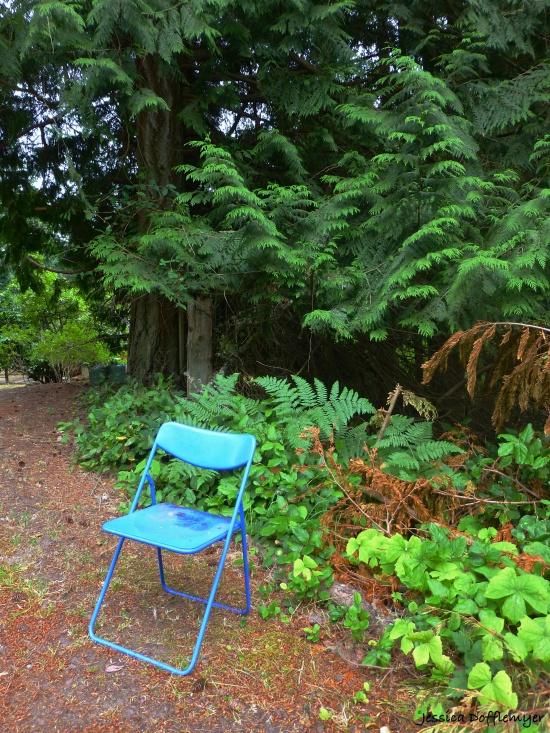 2014-08-28_blue chair