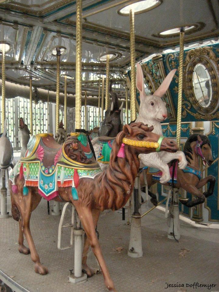 2014-09-05_carousel