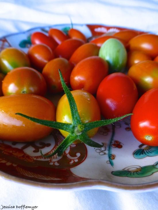 2014-10-16_tomatoes close