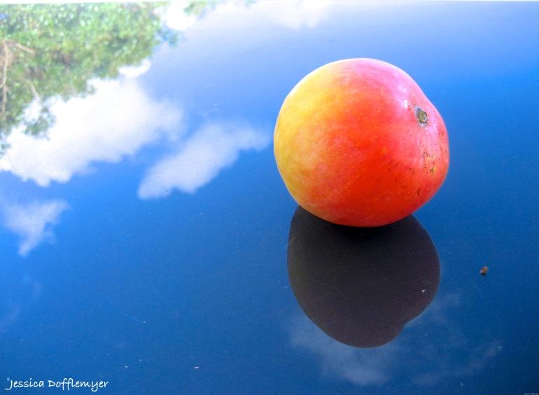 2015-06-02_mango sky