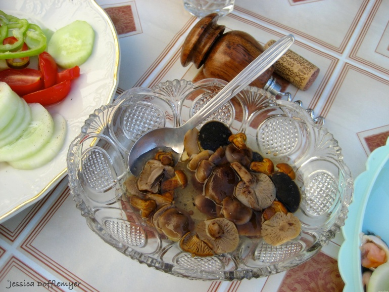2015-08-01_mushrooms