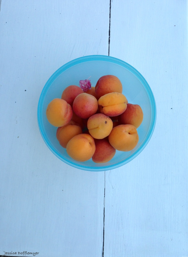 2015-08-01_peaches