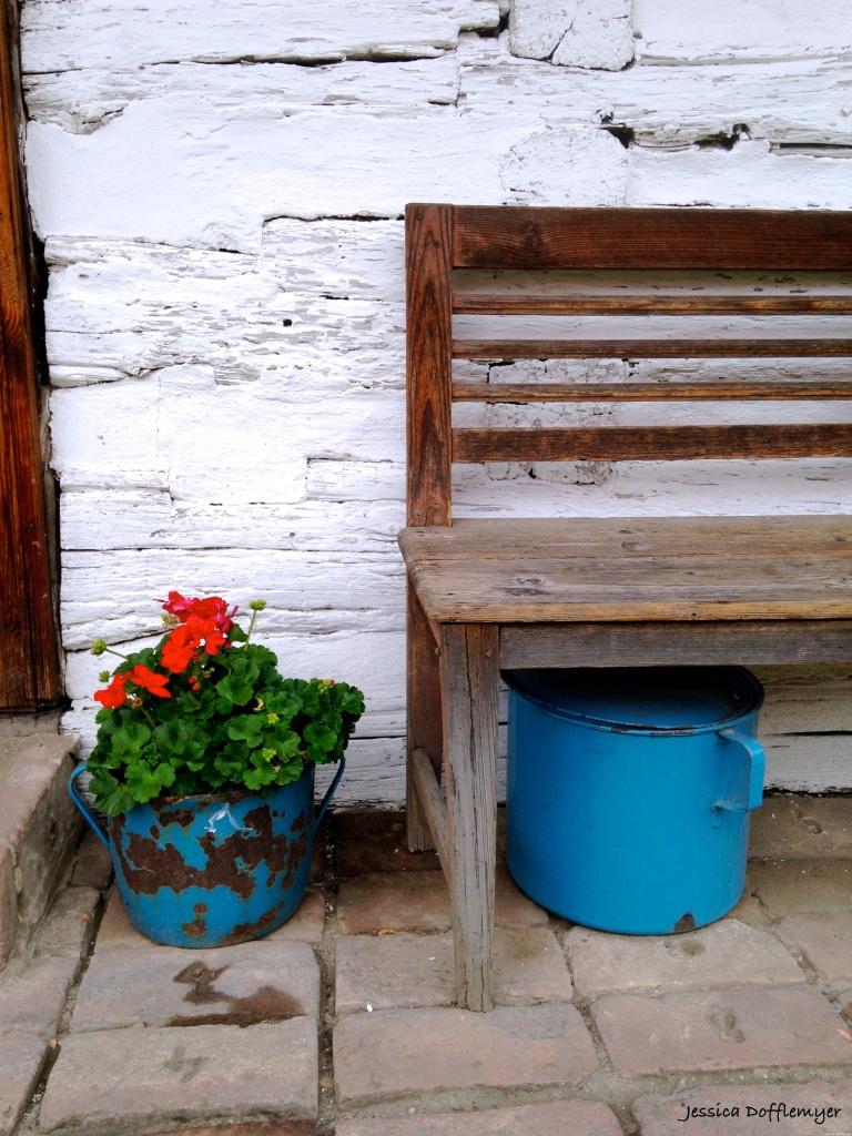 2015-08-18_C_geranium pot