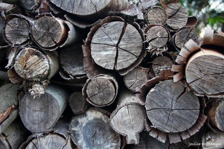 2016-02-01_wood pile